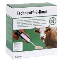 Technovit-2-Bond Starterset,mit Dosierpistole f. 10 Anwendungen